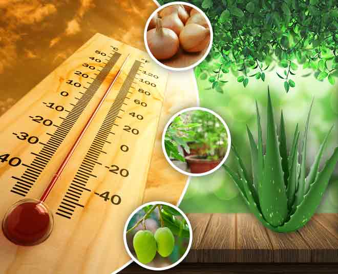 home remedies to cure heatstroke in summer main