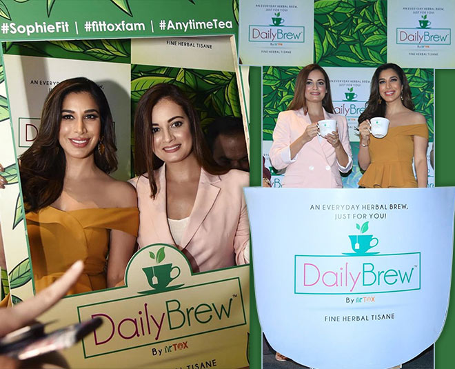 sophie choudry launched herbal tea main