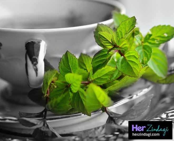 easy and healthy mint recipes