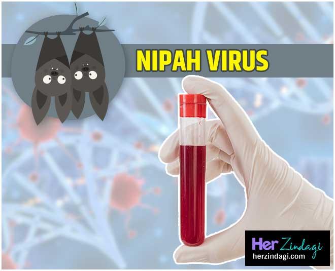 nipah virus MAIN