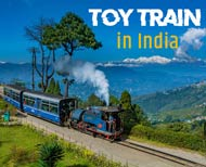 must experience toy train in india thumb