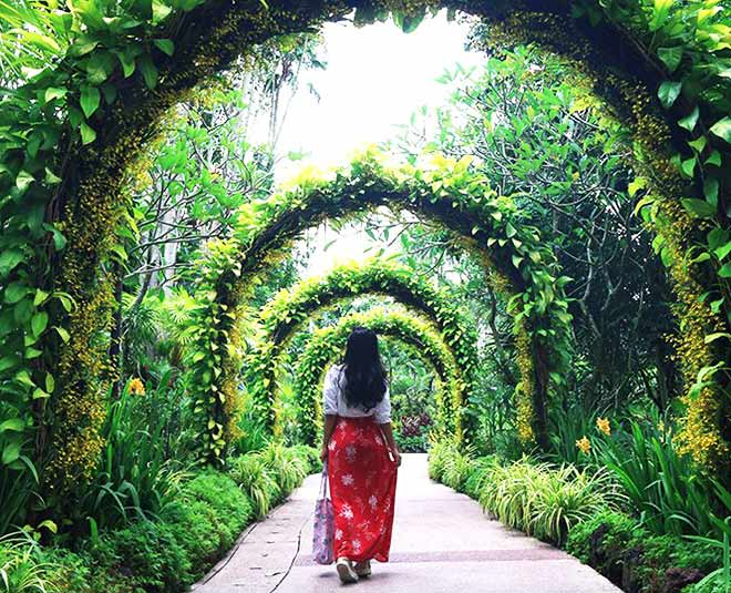 Beautiful botanical gardens around the world must visit