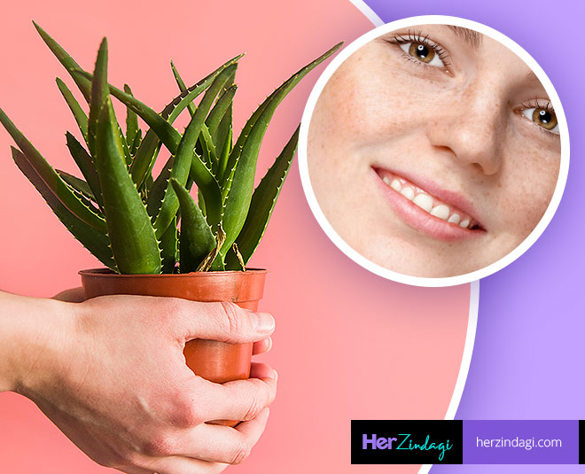aloe vera for pigmentation card ()