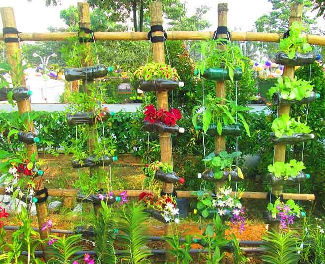 garden best  Main
