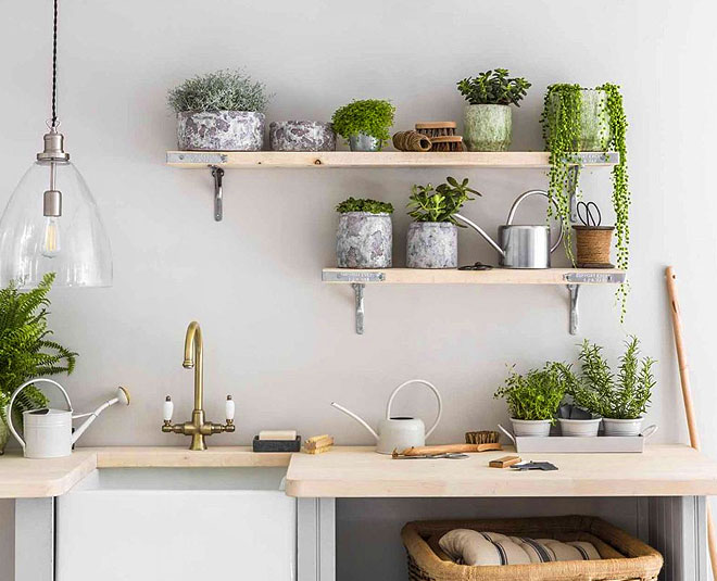 main how to create greenery in kitchen