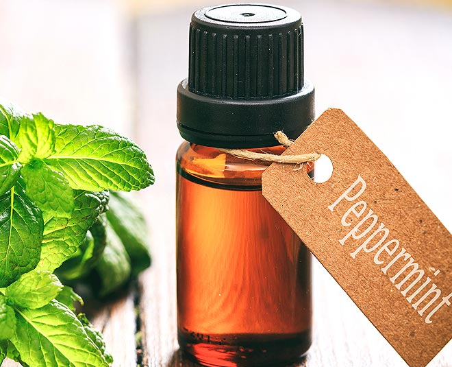 oil peppermint