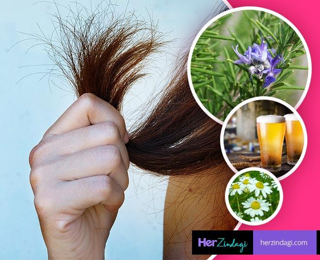 damaged hair beauty main