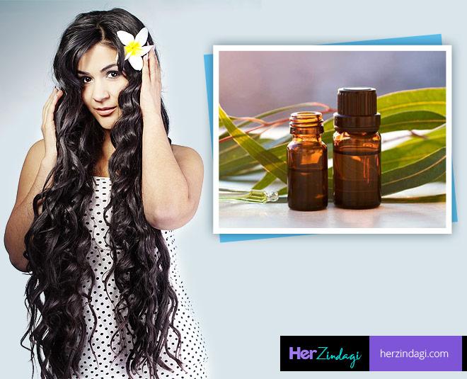 eucalyptus oil in henna for hair