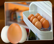 thumb fridge eggs