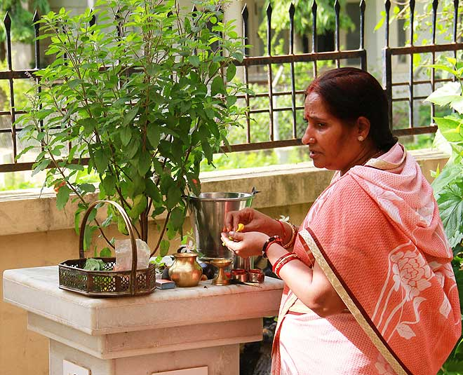 5 Things To Remember While Performing Tulsi Puja