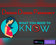 dengue during pregnancy advice