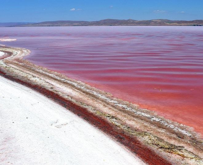 Plan Your Trip To The Lake Of Changing Colours, Pangong Lake