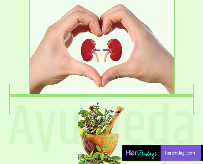 ayurvedic medicine for kidney cleansing