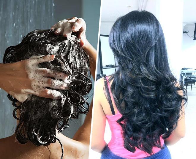 best drugstore shampoo for dry hair