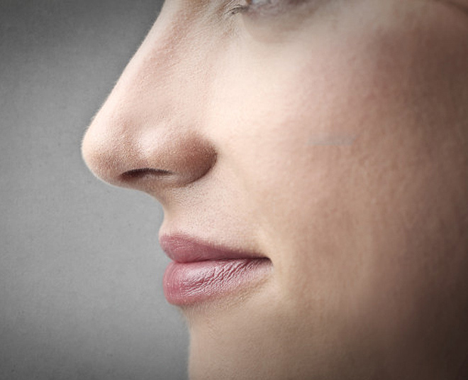 Is more nose looking which attractive 8 Reasons