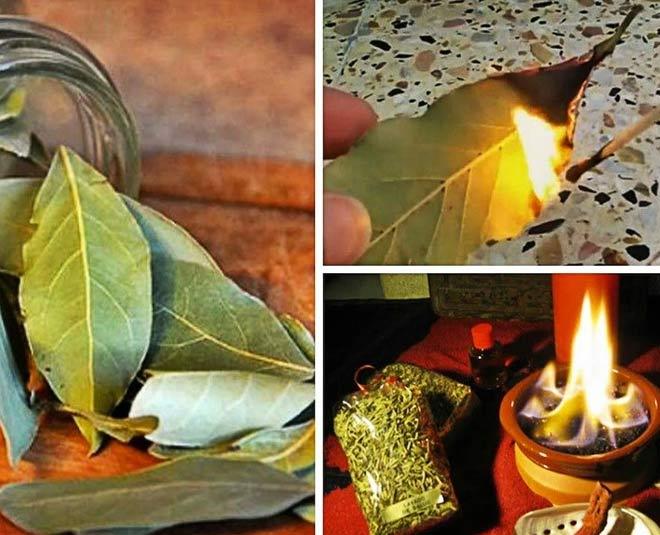 bay leaves burning main