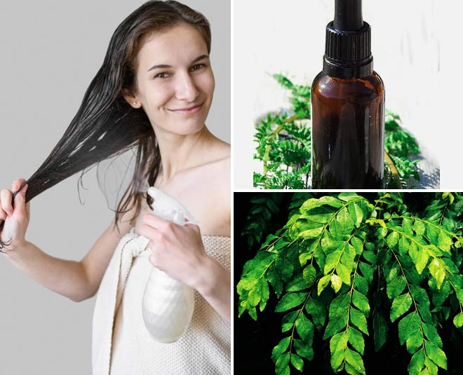 Curry for hair of uses leaves 9 Top