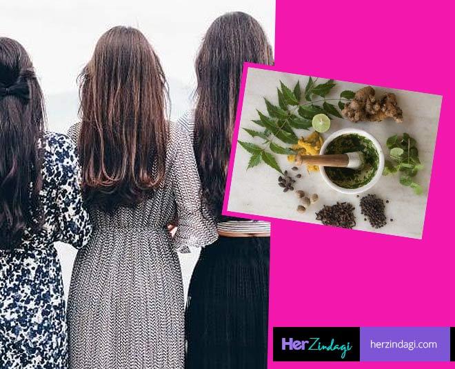 hair herbs main