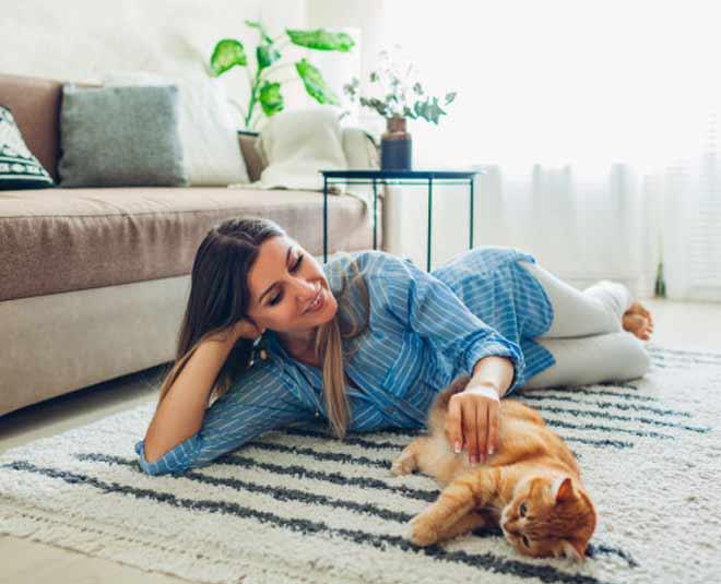 pet friendly rug m