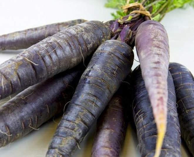 know about benefits of black carrot