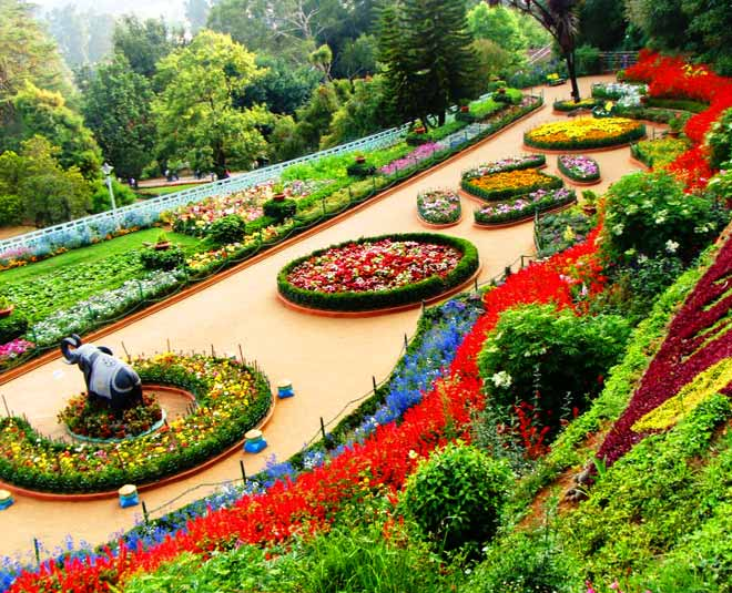 best places to  visit in ooty trip
