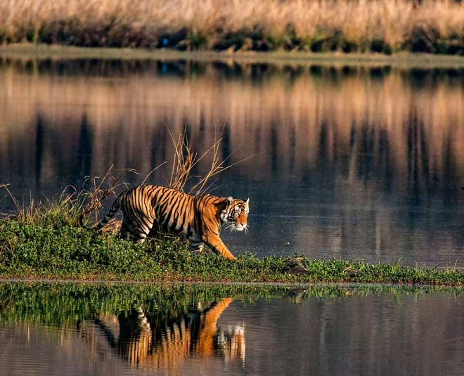 complete information about west bengal best tourist places main