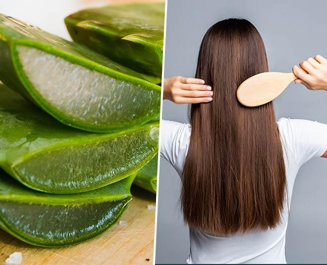 Newest > aloe hair benefits | Sale OFF - 62%