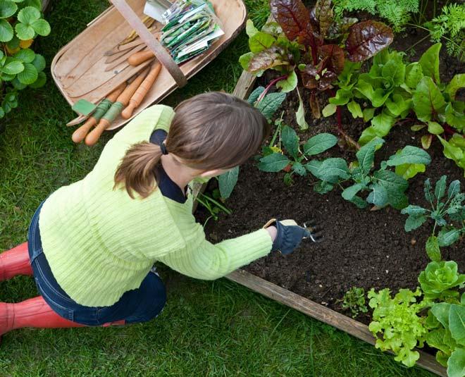 gardening health benefits m