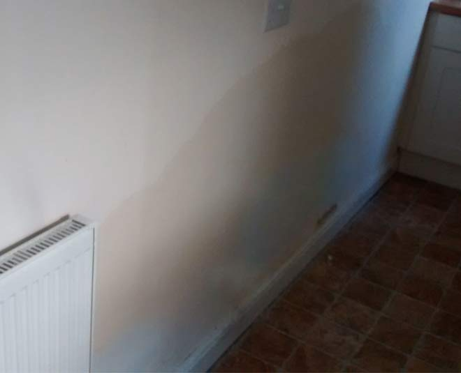 remove moisture from damp walls