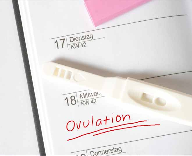 can clearblue ovulation test detect pregnancy