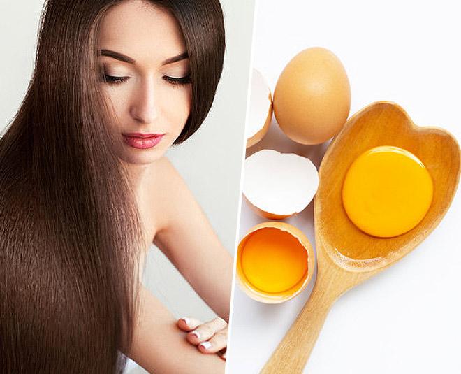 eggs  for  hair main
