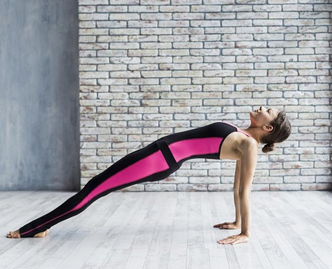 all plank exercise