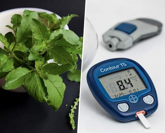 diabetes herbs main
