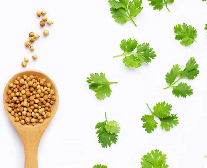 seeds coriander benefits