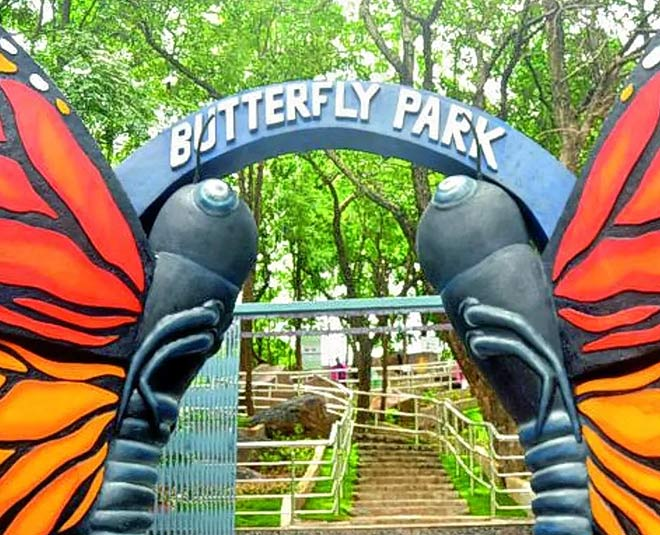 best Butterfly Parks in India