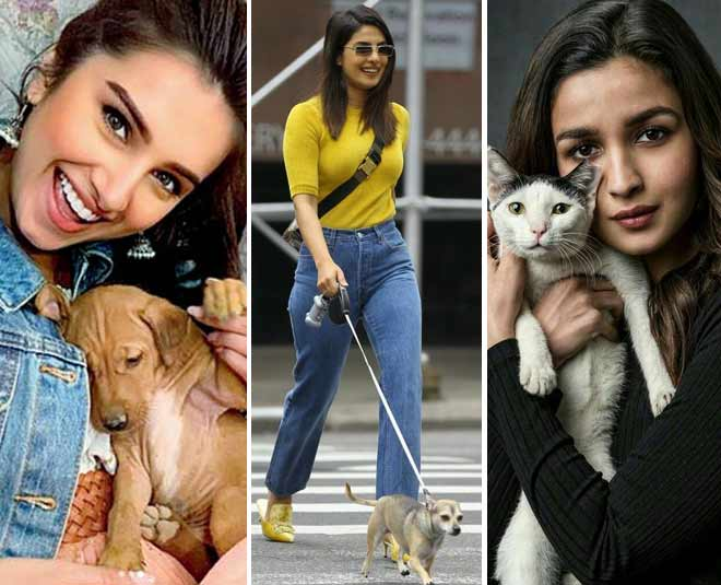 Celebrities With Their Super Adorable Petsss