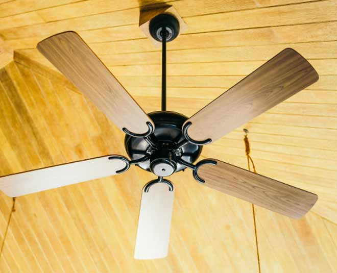 Fan cleaining main