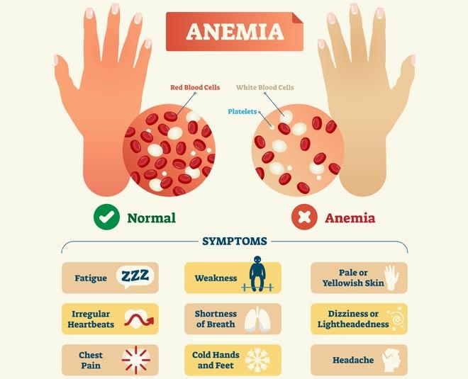 anemia main