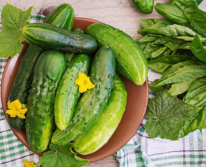 Is eating cucumbers everyday bad for you