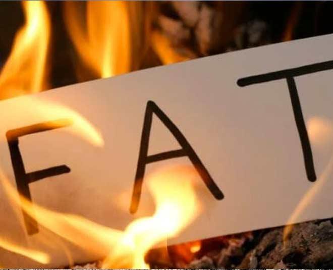 fat burning fruits main