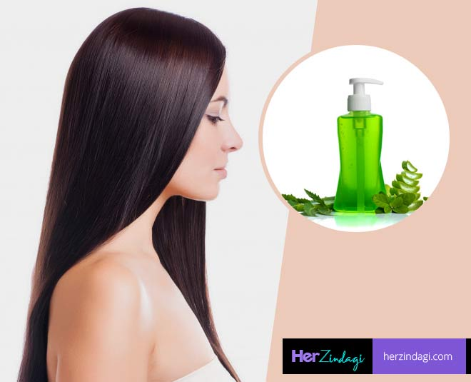 hair problems home remedy main