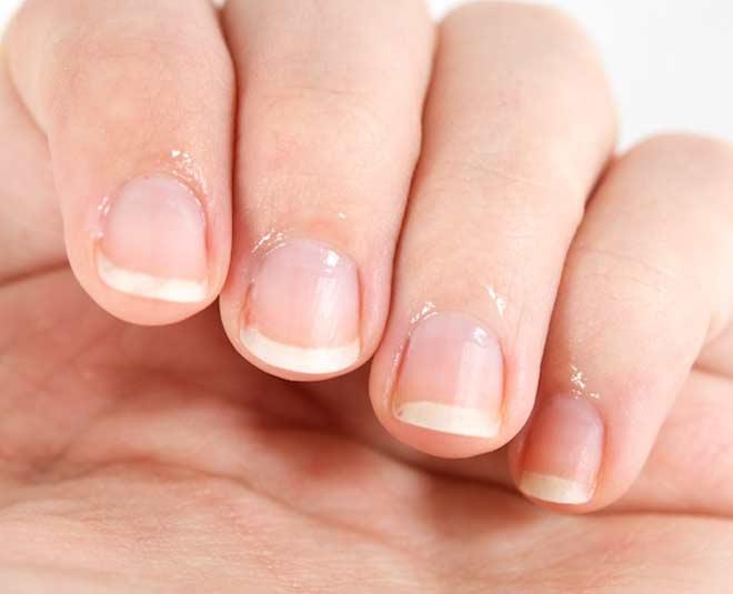 tender nail m