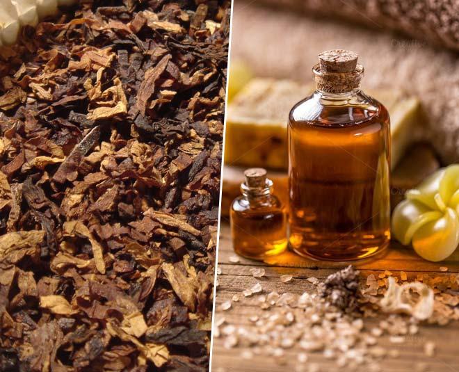 tobacco aroma oil main