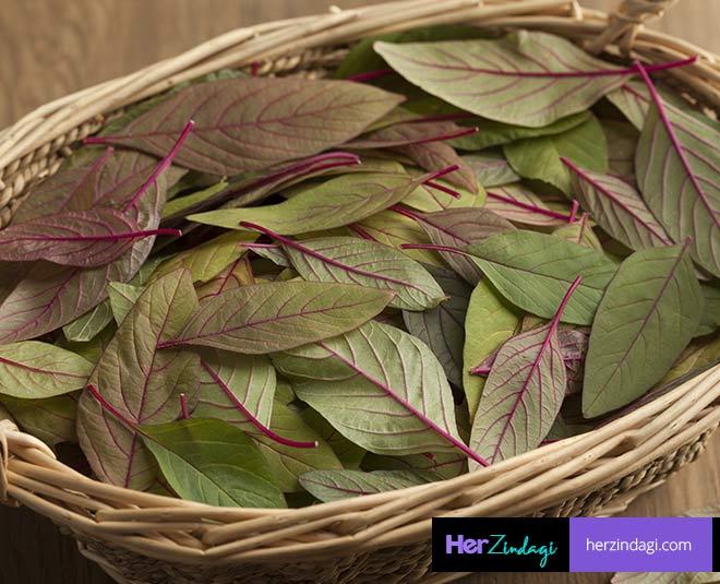 amarnath leaves main