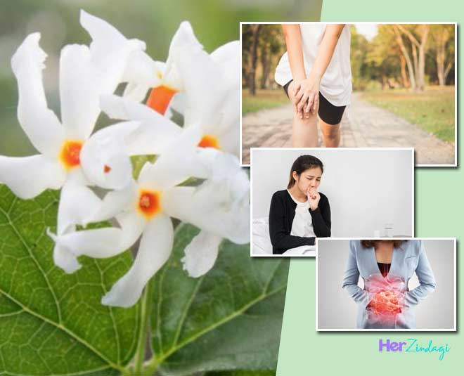 har singaar leaves benefits