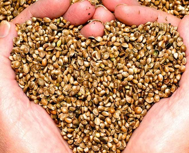 hemp seeds main