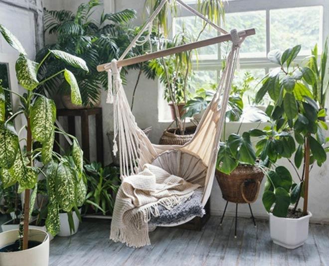 plants for positivity