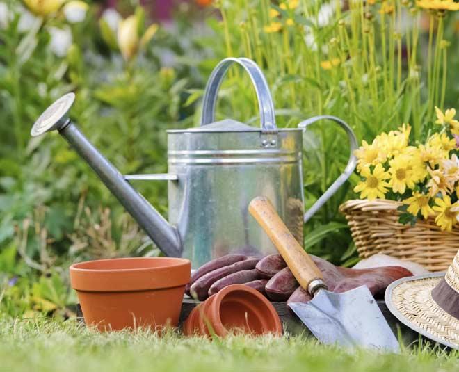 gardening main