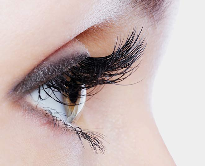 get rid of eyelash dandruff