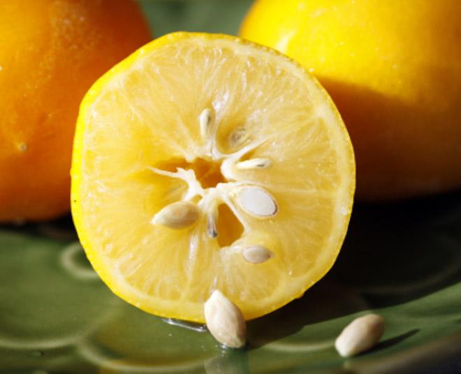 lemon  seeds  side  effects
